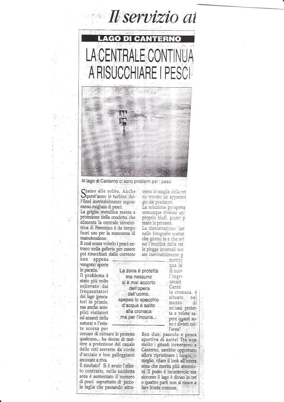 IMG_Pagina_1.jpg