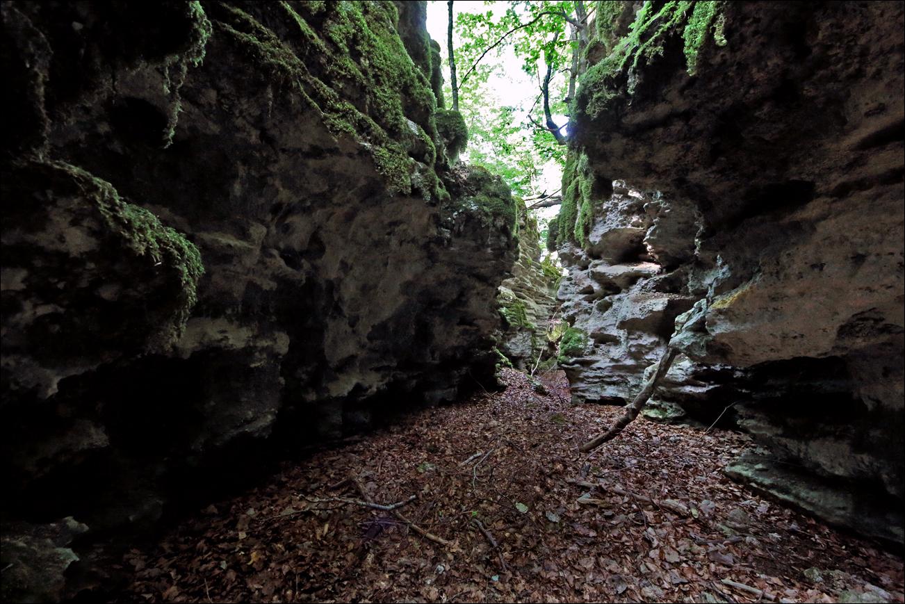 p canyon IMG_7533 W.jpg